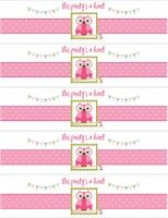 Owl Themed Birthday Party with FREE Printables