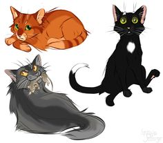 Firepaw, Ravenpaw and Graypaw. A quick doodle. Now i'm going to animate MAP parts all day, after i'm done - gonna draw commissions. (c) Erin HunterArt (c) me Warrior Cats Fan Art, Warrior Cats Series, Warrior Cat Drawings, Warrior Drawing, Love Warriors, Cat Character, Cat Memes, Animal Drawings, Cat Art