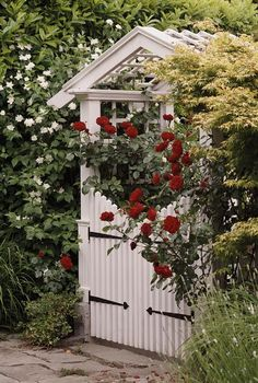 Dreamin of my new gate arbor...