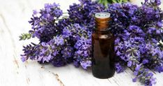 Lavender spa Photos Lavender and massage oil on a old wooden background by Almaje Basil Essential Oil, Essential Oils For Sleep, Natural Essential Oils, Foot Spray, Lavender Benefits, Plant Therapy, Exfoliant, Massage Oil, Natural Cleaning Products