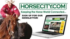 Horsecity- quite a lot of interesting articles. Need to take a closer look.