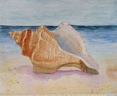 Image result for Watercolor Shells