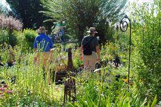 Sommerstimmung auf der Illertisser Gartenlust