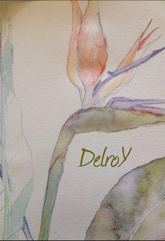 """DelroY estudió acuarela """"flor del paraíso"""" sin acabar."""