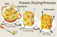 Freeze-drying technology for fruit and vegetables