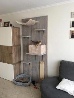 41 New ideas cat tree diy play areas Animal Room, Diy Cat Tree, Cat Hacks, Cat Towers, Cat Shelves, Cat Playground, Cat Room, Cat Condo, Pet Furniture