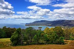 The Tasman Peninsula as seen from Pirate's Bay lookout, Forrester Peninsula, Tasmania.