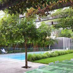Garden Design Architecture Swimming Pools 24 Ideas For 2019 Backyard Pool Designs, Small Backyard Pools, Backyard Pergola, Swimming Pool Designs, Patio Design, Backyard Landscaping, Garden Design, Patio Roof, Pergola Kits