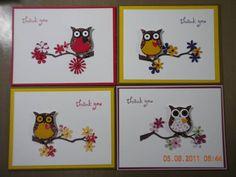Søde ugle kort, med gren og blomster..