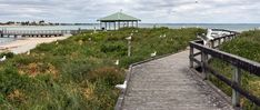 Penguin Island Boardwalk & Walk Trail is a grade 1 Circuit hike located in Penguin Island Western Australia. The hike should take approximately to complete. Thing 1, Western Australia, Grade 1, Hiking Trails, Garden Bridge, Penguins, Westerns, Walking, Outdoor Structures