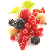 http://mondocrueltyfree.it/chi-combatte-la-cellulite-sono-gli-alimenti/#
