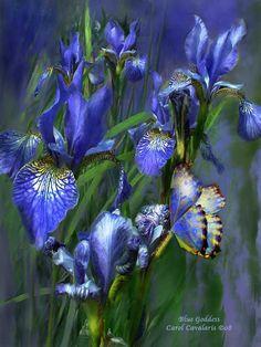 blue goddess  -  http://www.romanceworks.com/BlueGoddess.html