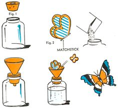 Butterfly Flying Toy Craft- glass jar/large cork to fit into its top. Cut a hole in the center of the cork, fit a small funnel securely into it. Cut several butterflies from tissue paper. Glue a small bit of match stick to the center of each one. Fill the jar 1/2 full of water. Drop a package of Alka-Seltzer into it & close w/ cork. Put butterflies in funnel. When the tablets begin to effervesce, the gas given off will pass through the funnel and send the butterflies winging about the room