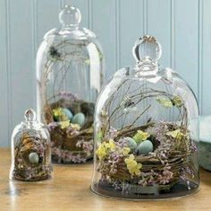 Bird nest decor