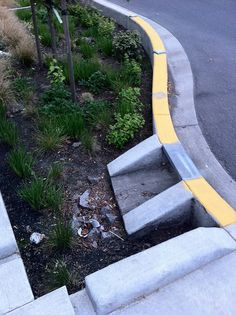 Bioswale on Couch and SE 11th, Portland, Oregon by sillygwailo, via Flickr