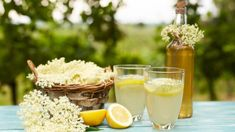 Domáci bazový sirup | Recepty.sk Stevia, Healthy Drinks, Better Life, Panna Cotta, Pudding, Ethnic Recipes, Desserts, Food, Super