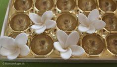 Sådan laver du en frangipani blomst i fondant / gum paste
