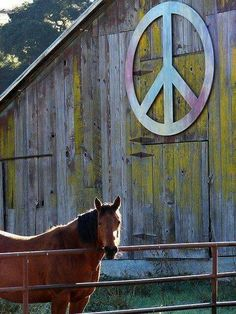 Peace, Love, & Horses | TheSpectrumWorkshop.com • Prints & Artist Designed Goods Inspired by Life's Adventures