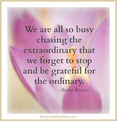"""We are all so busy chasing the extraordinary that we forget to stop and be grateful for the ordinary."" - Brene Brown"