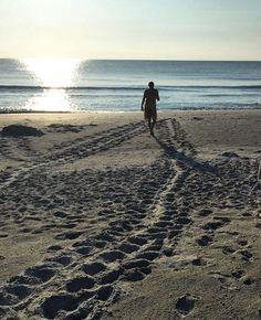 Check out all the sea turtle tracks! #beach #seaturtle #seaturtles #footprints #sand #keepbeacheshappy #cleanbeach #beautiful #marinedebris