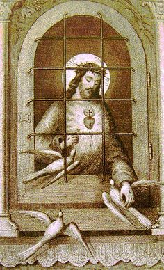 """""""O Divine Jesus, lonely tonight in so many Tabernacles, without visitor or worshipper, I offer Thee my poor heart. May its every throb be an act of love for Thee.  Thou art always watching beneath the Sacramental Veils; in Thy Love Thou dost never sleep and Thou art never weary of Thy vigil for sinners.""""  - 'A Prayer to Jesus Abandoned'"""