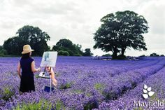 Photo competition 2013 Results | Mayfield Lavender