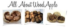 The Earth of India: All About Wood Apple Fruit