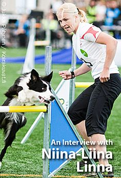 CleanRun magazine site is chock full of great agility articles and videos