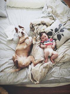 Dog & Baby Cuteness