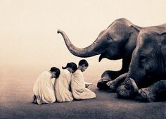 Ashes and Snow by Gregory Colbert Image Elephant, Elephant Love, Snow Photography, Animal Photography, Concept Photography, Stunning Photography, Beautiful Creatures, Animals Beautiful, Paz Interior