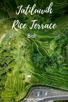 In the hills of Bali sits Jatiluwih Rice Terrace, a UNESCO World Heritage Site that goes on for miles. But is it better than Tegalalang in Ubud? Here's our thoughts which you should go to. Ubud, Lombok, Travel Advice, Travel Guides, Travel Tips, Vietnam, Voyage Bali, Rice Terraces, Bali Travel
