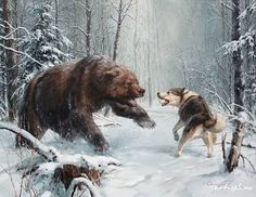 Diamond Painting Animals Diamond Embroidery Bear Hunting Decorative Pictures Of Rhinestones Hobbies & Crafts Home Decor Wildlife Paintings, Wildlife Art, Animal Paintings, Animal Drawings, Drawing Animals, Bear Hunting, Hunting Art, Ours Grizzly, Art D'ours