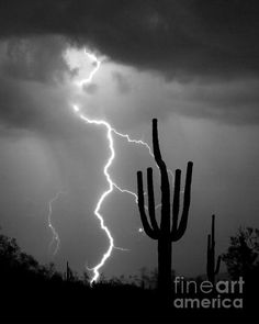 Monsoon weather thunderstorm Lightning bolt striking next to a giant Saguaro cactus in the Arizona Sonoran desert.  Fine art photography prints, decorative canvas prints, acrylic prints, metal print wall art for sale on FineArtAmerica.com. Prints starting at $25. Copyright: James Bo Insogna