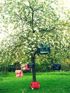 Cambridge Satchel's don't grow on trees ya know!