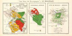 BURGUNDY BOURGOGNE WINE MAP Beaujolais vineyards vignobles AOCs. LARMAT 1953 Le Beaujolais, Antique Maps, Vineyard, Vintage World Maps, Burgundy, Wine, Antiques, Flowers, Old Maps