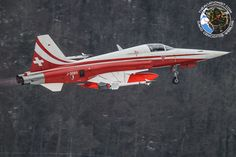 Jan. 21 to 24, the Swiss Air Force contributed to the security of the WEF international conference held at Davos, in Switzerland.