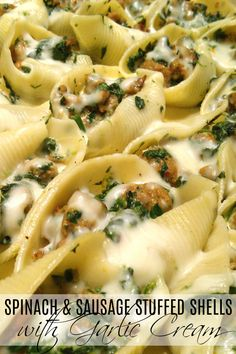 A rustic, simple recipe for stuffed pasta shells with Italian sausage, spinach and mozzarella topped with an easy garlic cream sauce. Pork Recipes, Chicken Recipes, Cooking Recipes, Recipies, Healthy Recipes, Great Recipes, Dinner Recipes, Favorite Recipes, Amazing Recipes