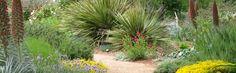 Storer Garden
