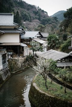 Local Milk   wander   japan : kurokawa onsen photography retreat