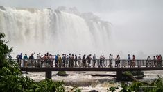 Gerelateerde afbeelding Niagara Falls, Amsterdam, Tourism, Nature, Travel, Turismo, Viajes, Traveling, Nature Illustration