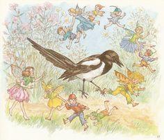 molly brett illustrations | Share