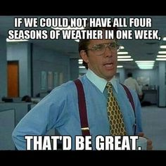 That'd be great, weather, office space