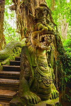 Travel Photography, Bali Monkey Forest Sanctuary, Ubud Monkey Forest Sanctuary, Bali top 10, Bali itinerary, Bali travel guide, Bali Indonesia Travel photos