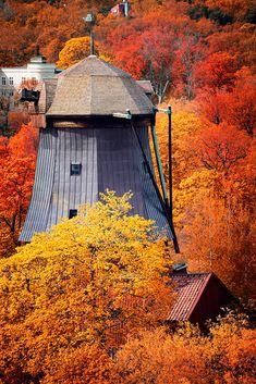 Autumn... Stockholm