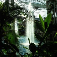 A cool #Instagram picture of Gaylord Opryland resort in Nashville, TN