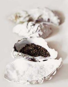 salt  pepper oyster shells Colour Design Art Photography Black White Food Color gourmet noir blanc