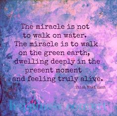 The miracle is not to walk on water....   Thich Nhat Hanh