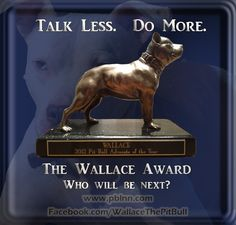 The Wallace Award 2013 nominees
