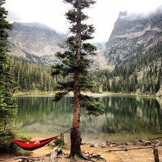 Chilling in a hammock waiting for the weekend to be over #nature #camping #relax by inspiredcamping