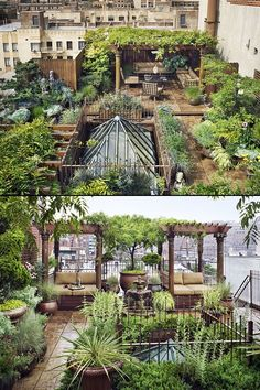 Rooftop Terrace, Terrace Garden, Garden Beds, Rooftop Gardens, Outdoor Gardens, Exterior Design, Interior And Exterior, Dream Garden, Home And Garden